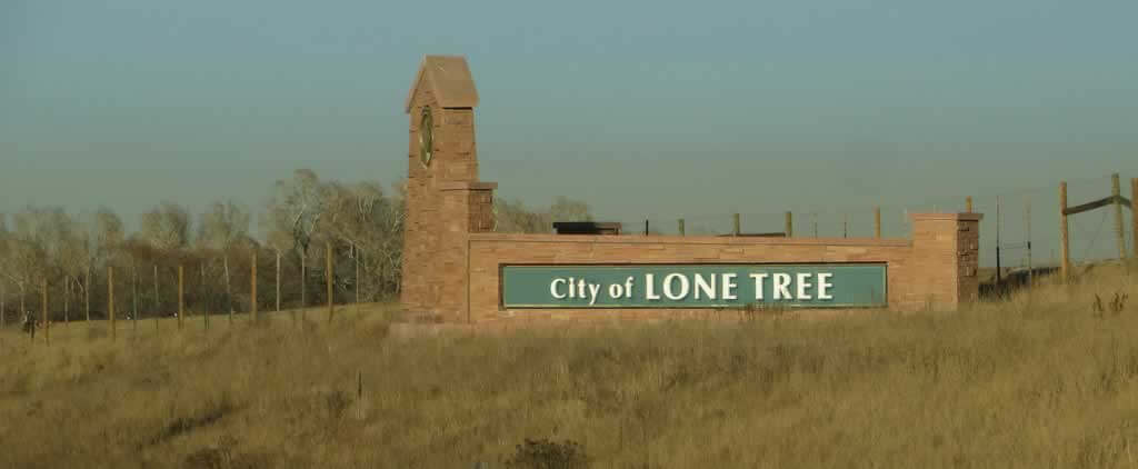 lone tree movers